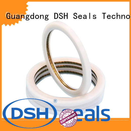 DSH ptbcustom energized seal wholesale for pneumatic industry