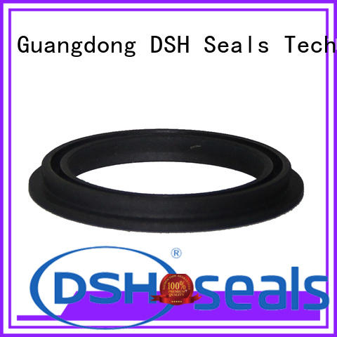energized energized seal personalized for metallurgical equipment DSH
