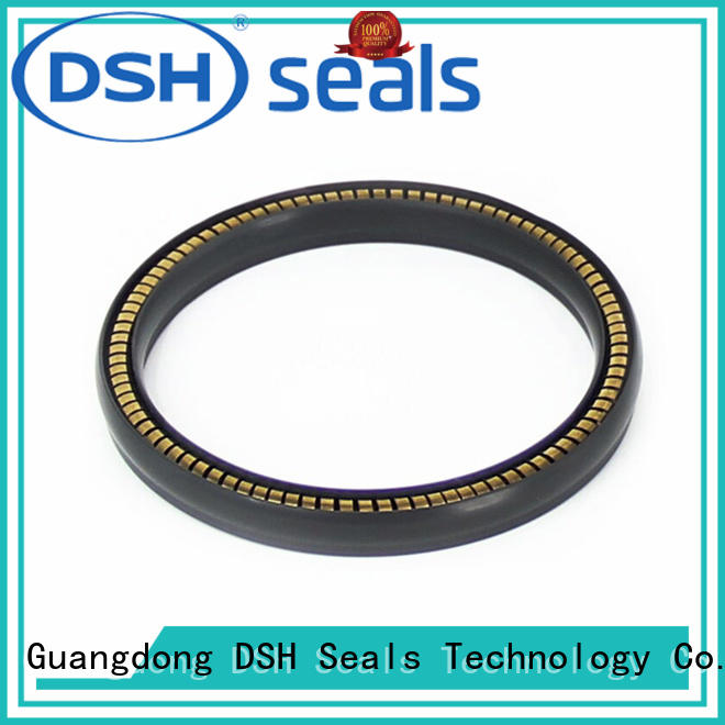 DSH seal spring o ring wholesale for engineering