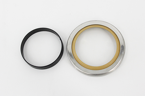 DSH-Rubber Oil Seal | Aral Type-ekonol Filled Ptfe Single Lip Oil Seal-5