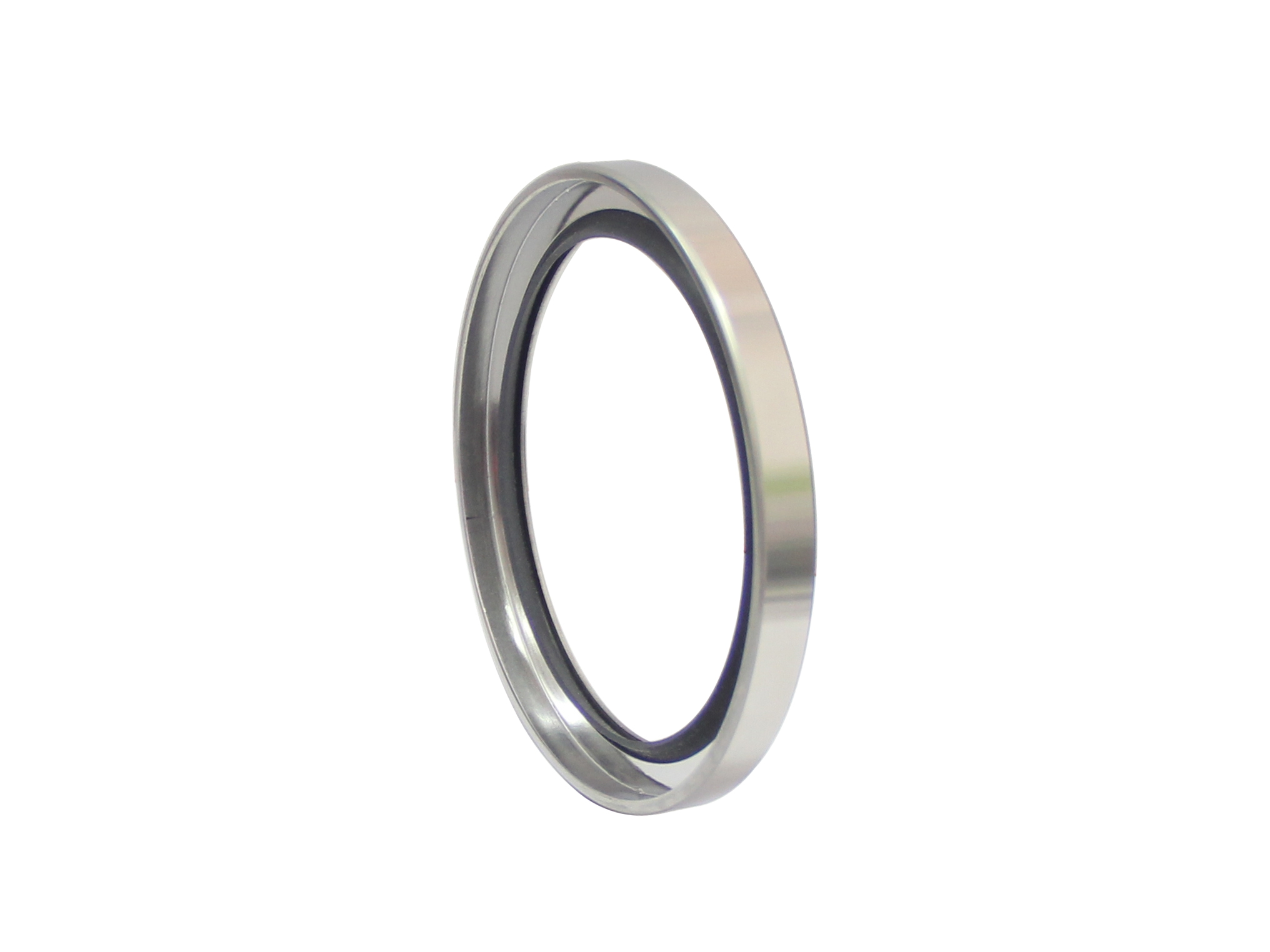 DSH-Oil Seal Types, Single Lip Ptfe Stainless Steel Rotary Shaft Seal