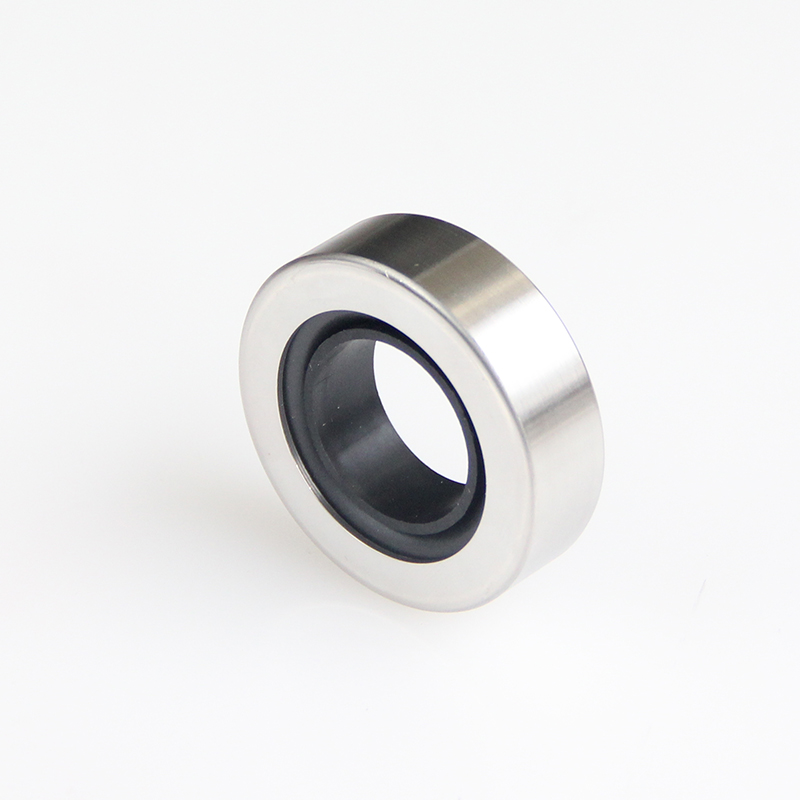 DSH-Different Types Of Oil Seals | Rotary Ptfe Lip Seal Radial Shaft Seal