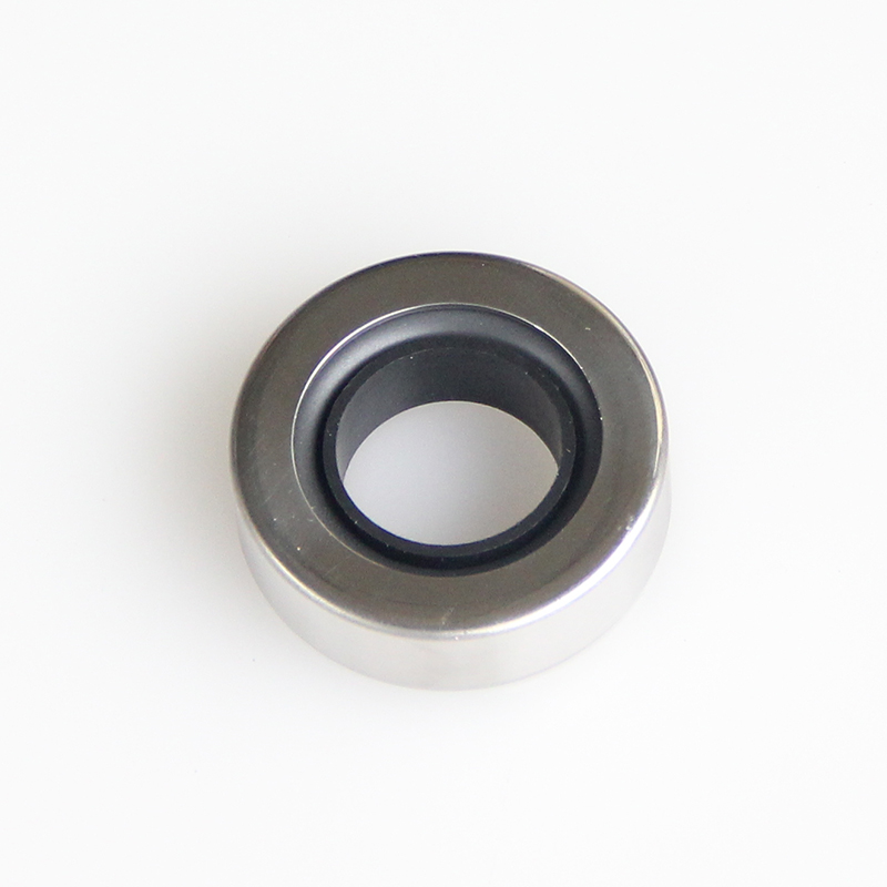 DSH-Different Types Of Oil Seals | Rotary Ptfe Lip Seal Radial Shaft Seal-2