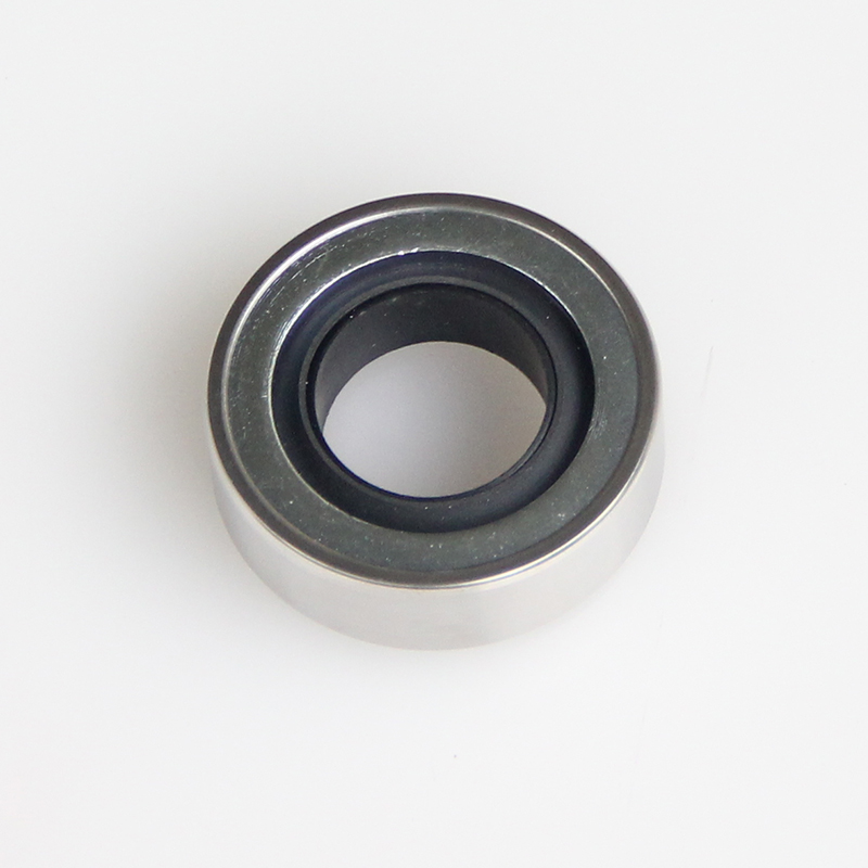 DSH-Different Types Of Oil Seals | Rotary Ptfe Lip Seal Radial Shaft Seal-3