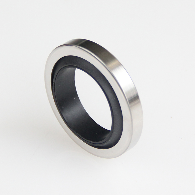 DSH-Different Types Of Oil Seals | Rotary Ptfe Lip Seal Radial Shaft Seal-5