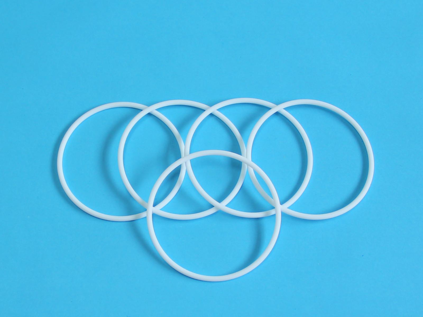DSH-Piston Seal Catalogue   O Ring Nbr Fkm Silicone Rubber Ptfe-2