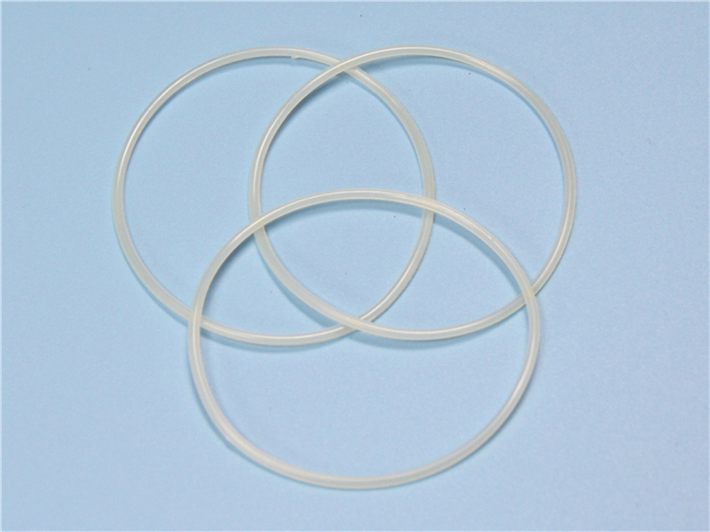 DSH-Piston Seal Catalogue   O Ring Nbr Fkm Silicone Rubber Ptfe-6