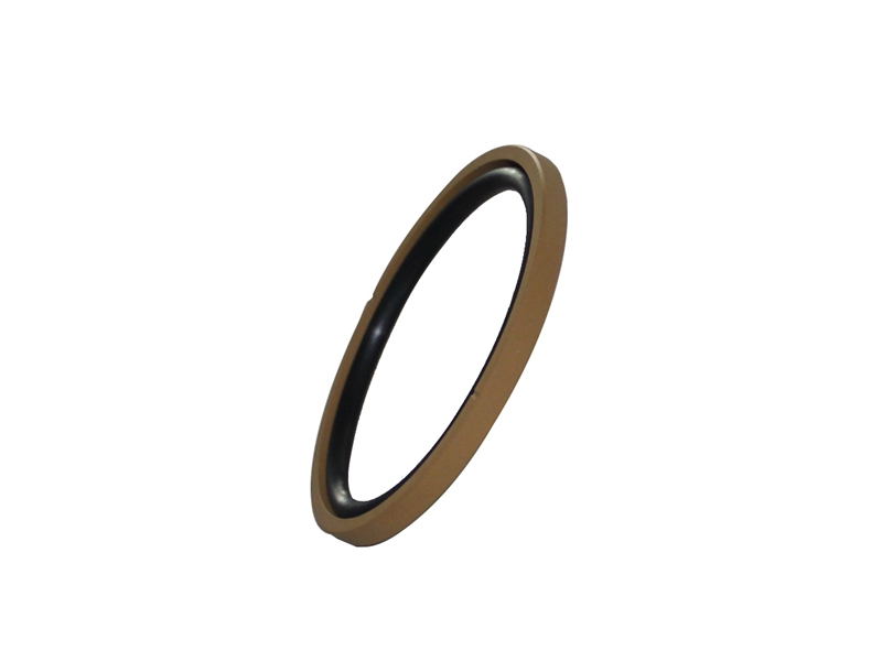DSH-Piston Seal Design | Piston Seal Bronze Filled PTFE Glyd Ring-3