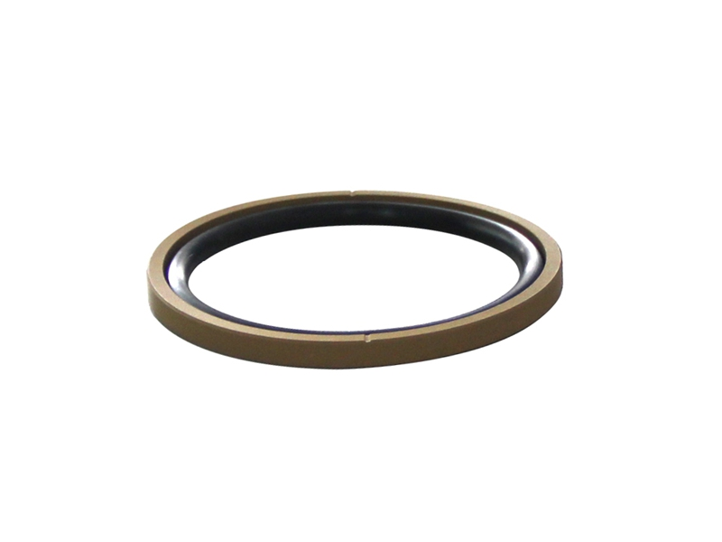 DSH-Piston Seal Design | Piston Seal Bronze Filled PTFE Glyd Ring-10