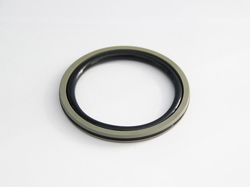 DSH-Professional Piston Seal Piston Ring Supplier