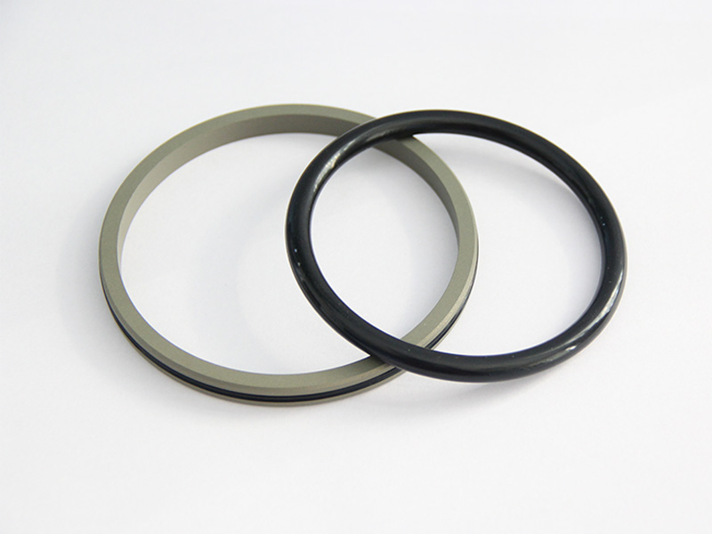 DSH-Professional Piston Seal Piston Ring Supplier-3