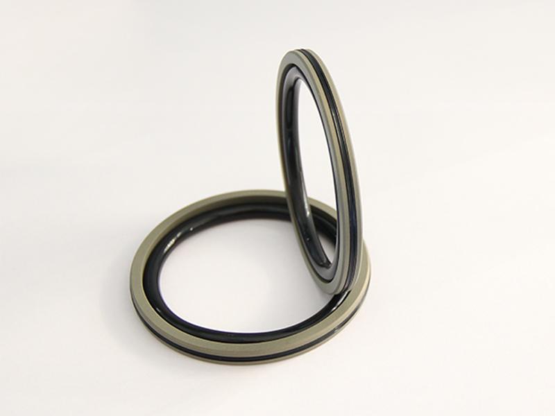 DSH-Professional Piston Seal Piston Ring Supplier-4