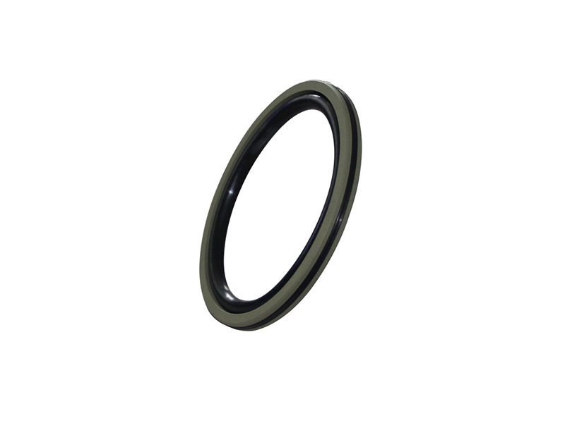 DSH-Professional Piston Seal Piston Ring Supplier-5