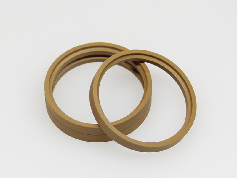 DSH-Professional Cylinder Rod Seals Packing Rod Seals Manufacture-12