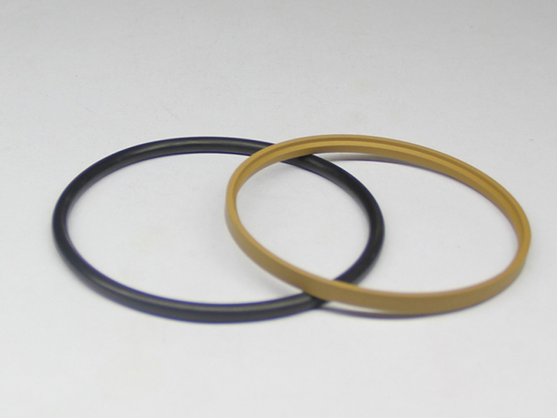 DSH-Professional Cylinder Rod Seals Packing Rod Seals Manufacture-15