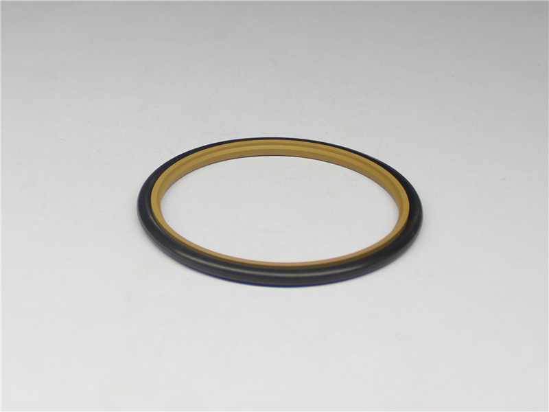 DSH-Professional Cylinder Rod Seals Packing Rod Seals Manufacture-16