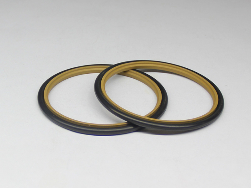 DSH-Professional Cylinder Rod Seals Packing Rod Seals Manufacture-17