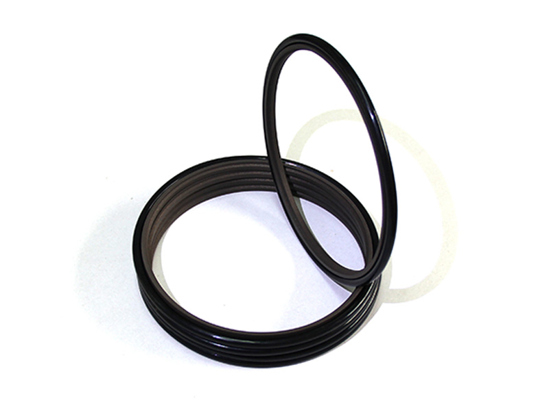 DSH-Professional Cylinder Rod Seals Packing Rod Seals Manufacture-20