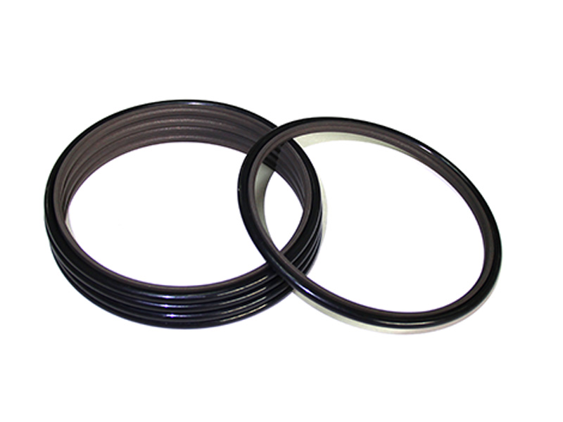 DSH-Professional Cylinder Rod Seals Packing Rod Seals Manufacture-21