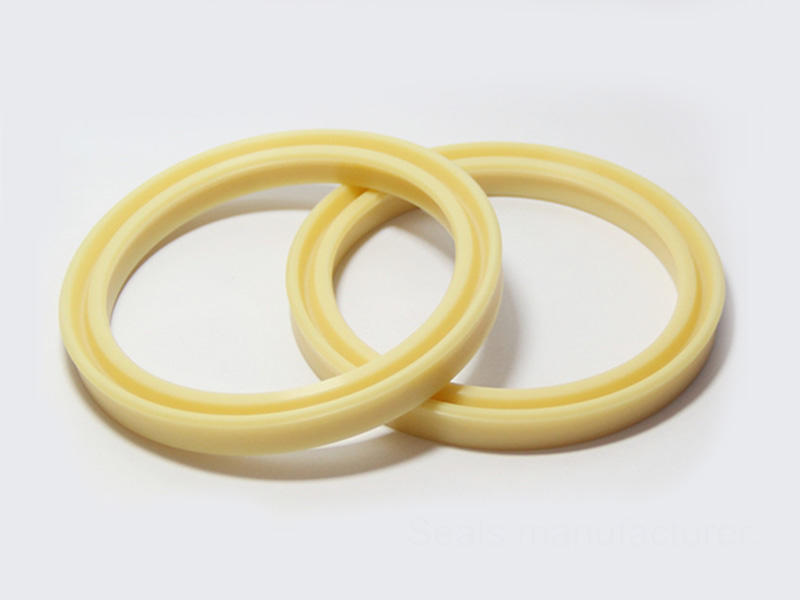 double pressure step rod seal catalogue DSH Brand