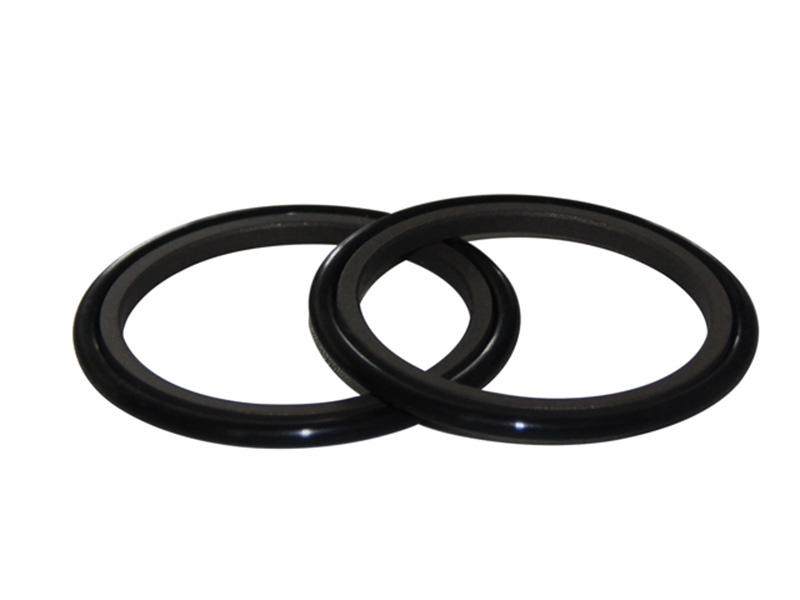 double hby speed DSH Brand rod seal catalogue factory