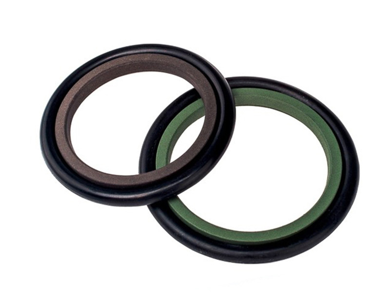 DSH-Rod Wiper Dsi-bronze Filled Ptfe Hydraulic Rod Seal Glyd Ring-2