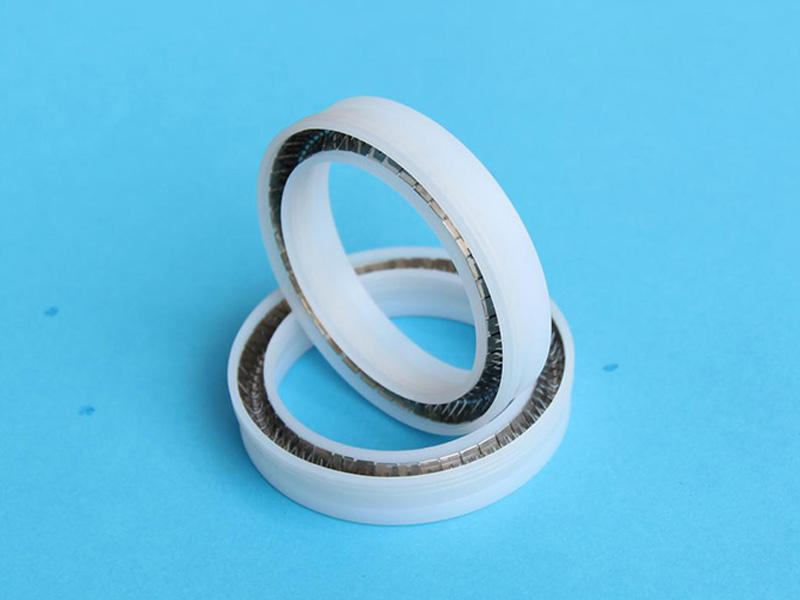 DSH face spring energized seals supplier for electronic appliances