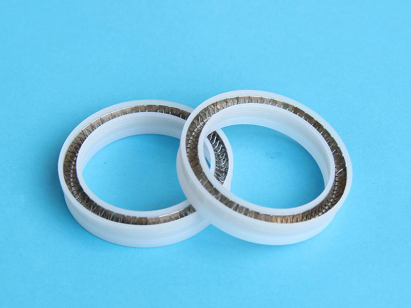 DSH-Manufacturer Of Spring Energized Ptfe Seal Custom Seal-1