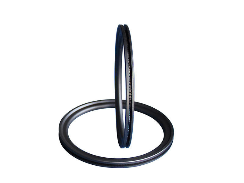 spring o ring ptacustom for gas industry DSH