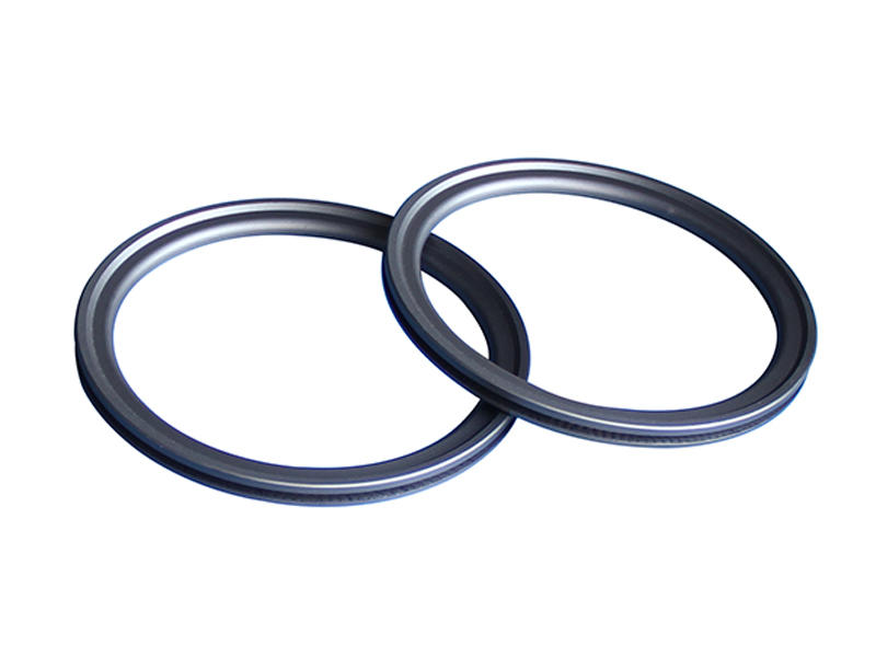 seal spring energized teflon seals