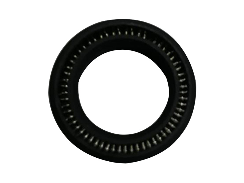 DSH-Professional Spring Seal Spring Energized Seal Design Supplier-1