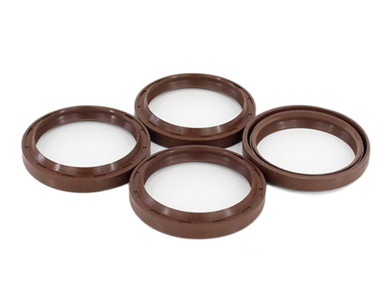 DSH-Different Types Of Oil Seals | Radial Shaft Double Lip Oil Seal
