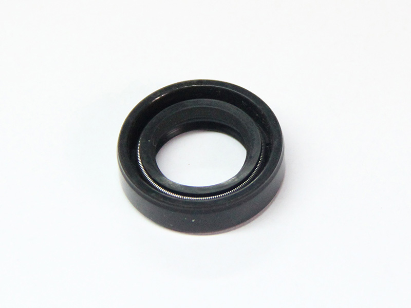 DSH-Different Types Of Oil Seals | Radial Shaft Double Lip Oil Seal-2