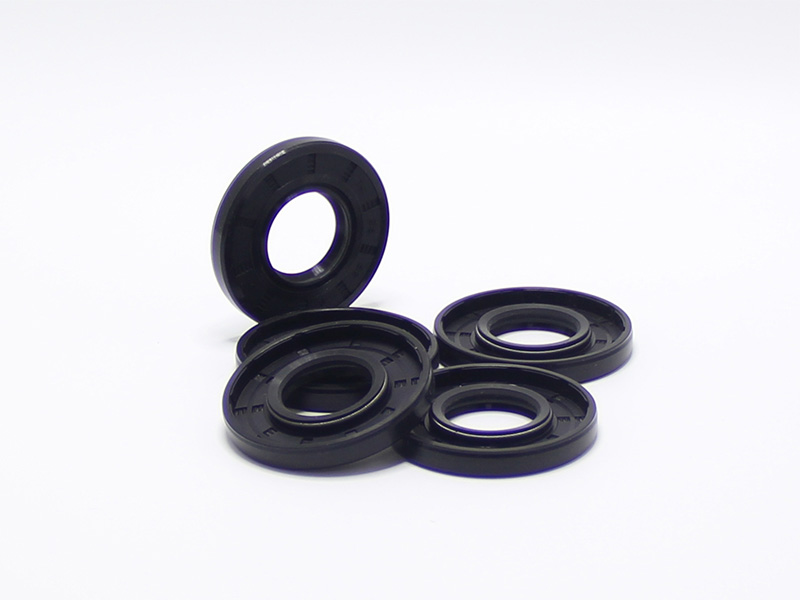 DSH-Different Types Of Oil Seals | Radial Shaft Double Lip Oil Seal-4