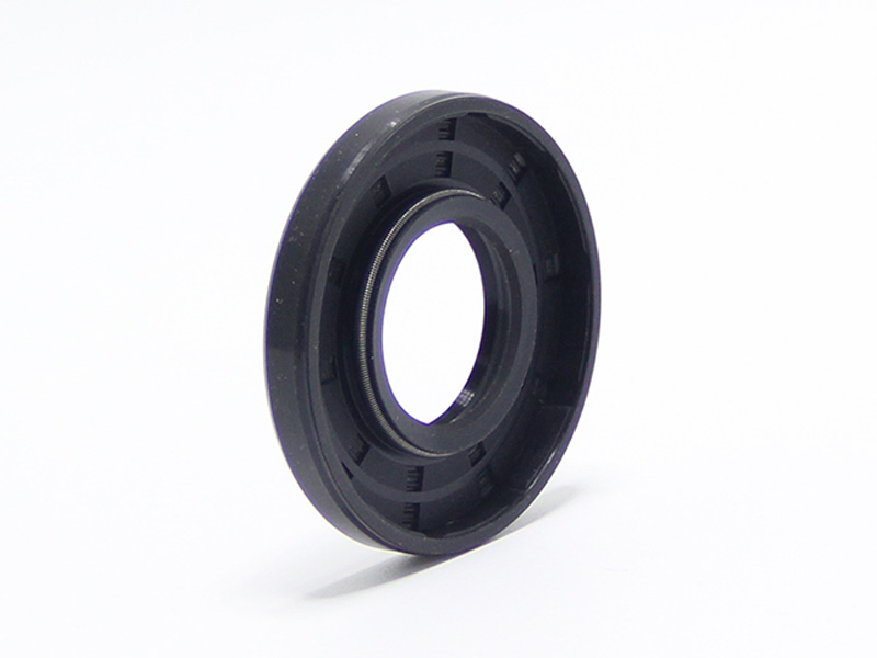 DSH-Different Types Of Oil Seals | Radial Shaft Double Lip Oil Seal-6
