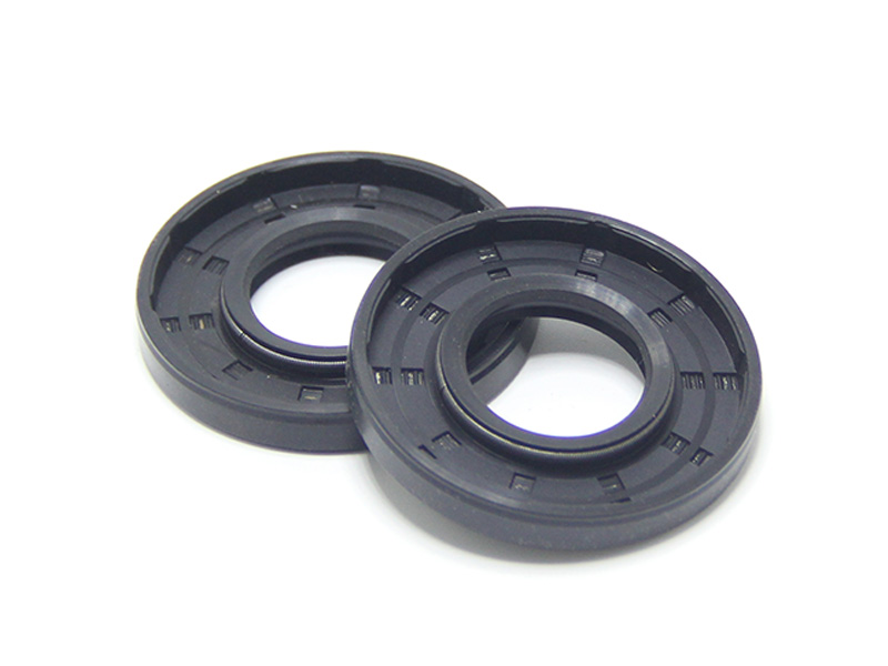 DSH-Different Types Of Oil Seals | Radial Shaft Double Lip Oil Seal-8