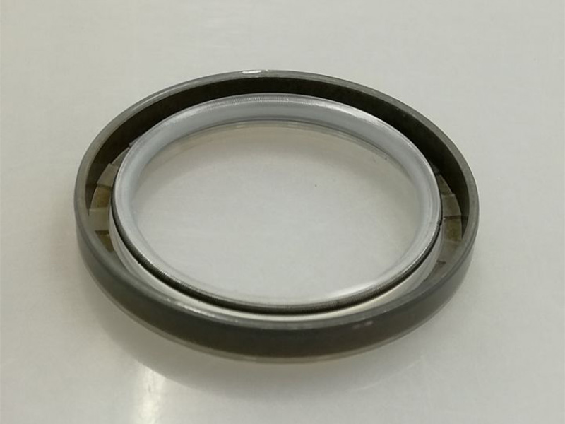 DSH-Different Types Of Oil Seals | Radial Shaft Double Lip Oil Seal-10
