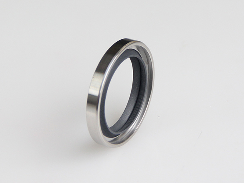 DSH-Best Shaft Oil Seals La Type-rotary Ptfe Lip Seal Radial Shaft Seal