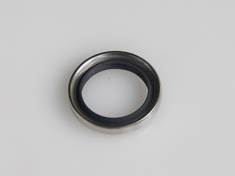 DSH-Best Shaft Oil Seals La Type-rotary Ptfe Lip Seal Radial Shaft Seal-2