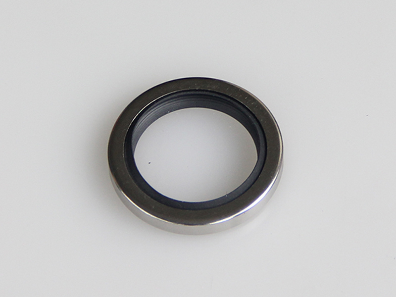 DSH-Best Shaft Oil Seals La Type-rotary Ptfe Lip Seal Radial Shaft Seal-3