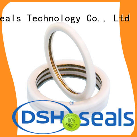 DSH helical variseal supplier for pneumatic industry