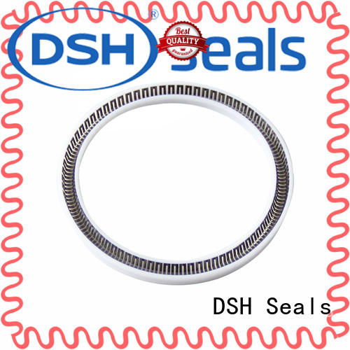 DSH flanged ptfe gasket ptfe for automotive industry