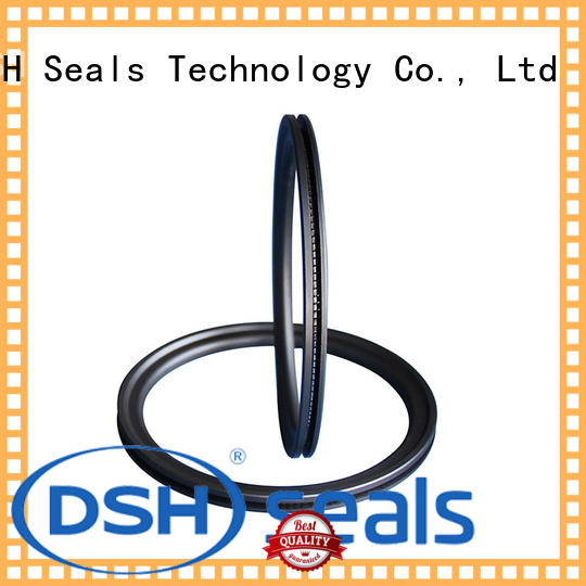 DSH ptbcustom spring o ring personalized for gas industry
