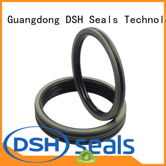 DSH double acting piston seal design design for machine