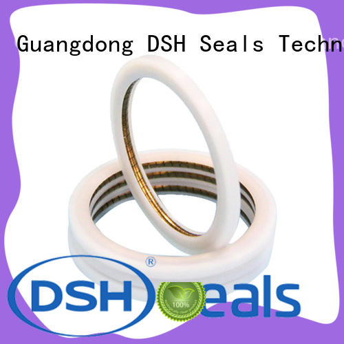 DSH energized spring seal supplier for electric equipment