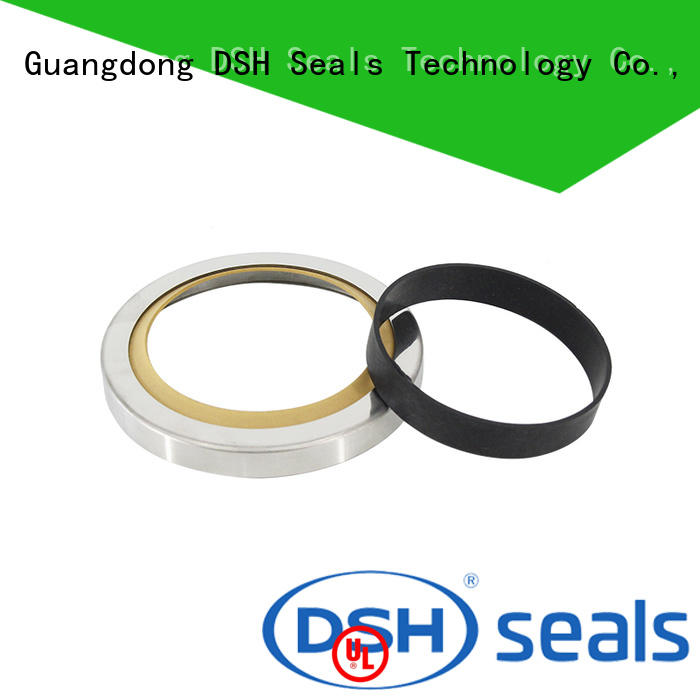 DSH aral shaft oil seals customized for machine
