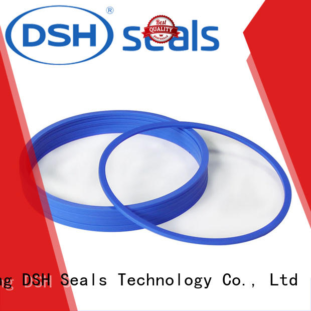 DSH heavy pneumatic cylinder piston seals design for gas industry