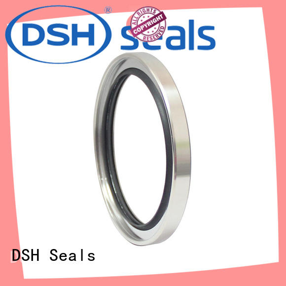 Custom shaft steel oil seals DSH ptfe