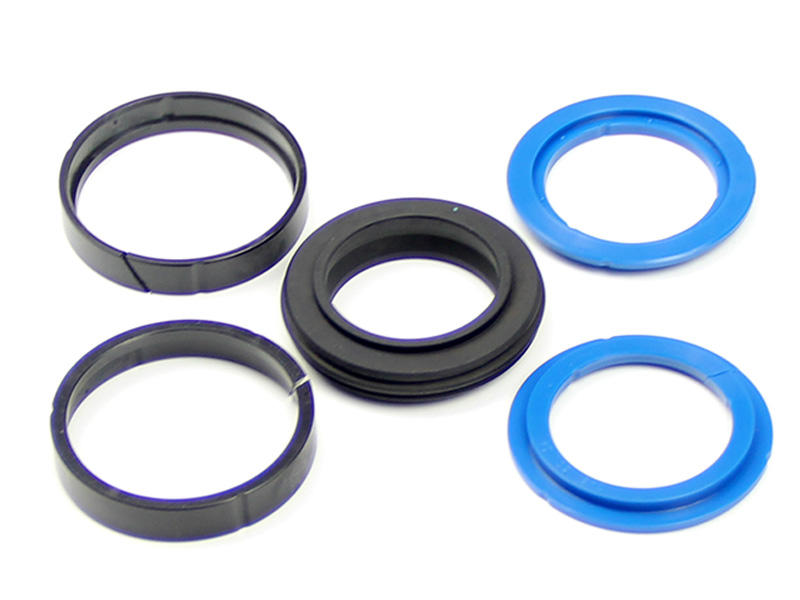 DSH-Piston Seal Design Manufacture | Double-acting Compact Piston Seal-2