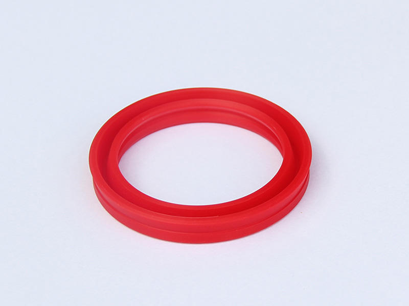 DSH-Professional Cylinder Rod Seals Rod Seal Catalogue Manufacture-2